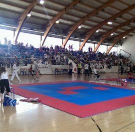 Brčko Open 2015